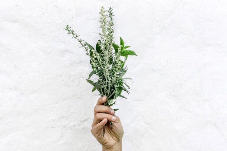 植物を持って掲げられた右手